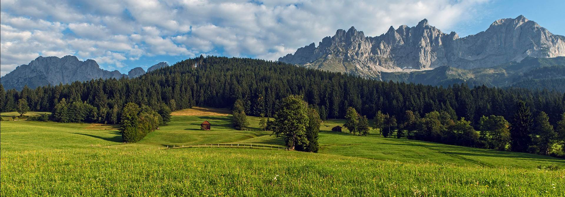 Meadow in Ellmau with a mountain panorama